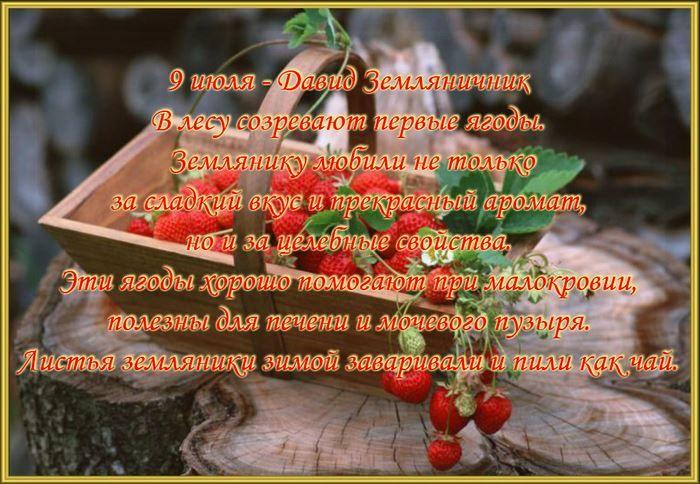 Какой праздник в России 9 июля 2019 года - Давид земляничник