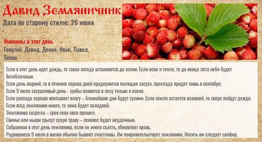 Какой праздник 9 июля 2020 года в России - Давид земляничник
