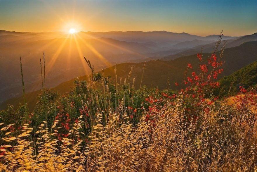 Летнего солнцестояния картинка бесплатно