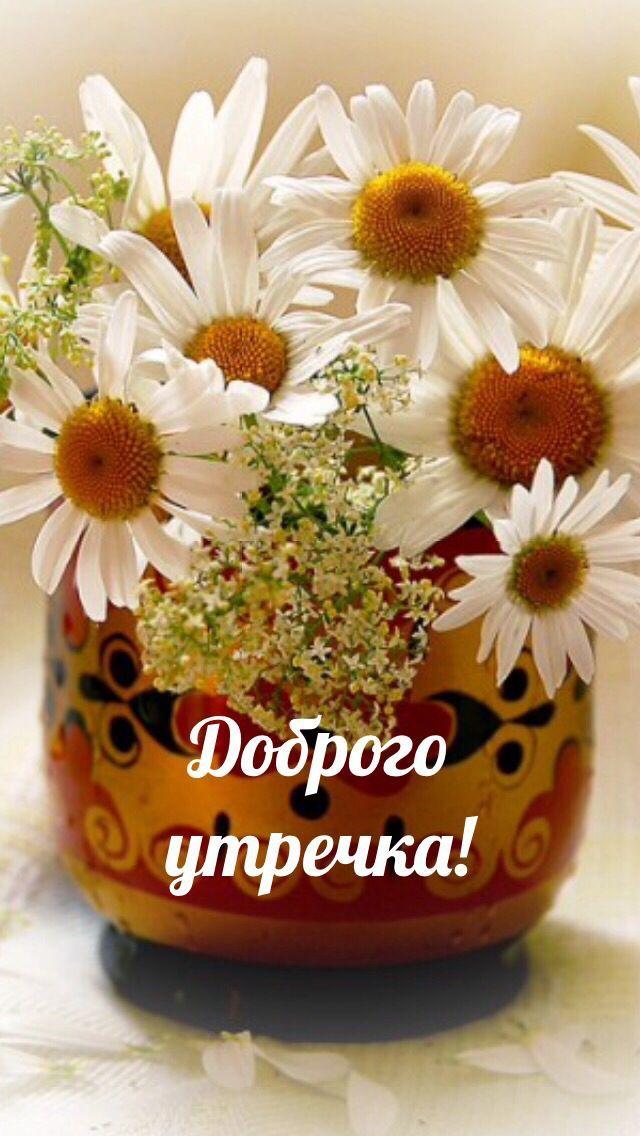 Пожелания С Добрым утром девушке