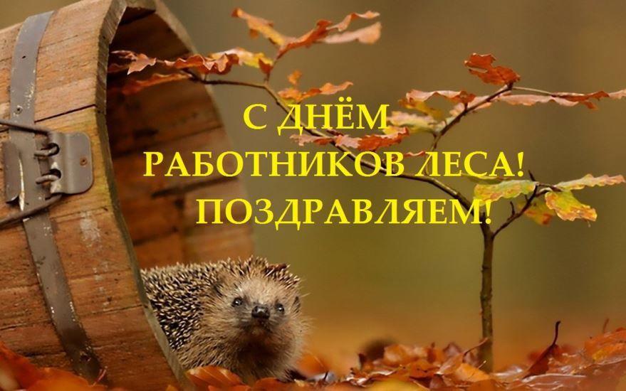 Скачать открытку с днем работника леса, бесплатно