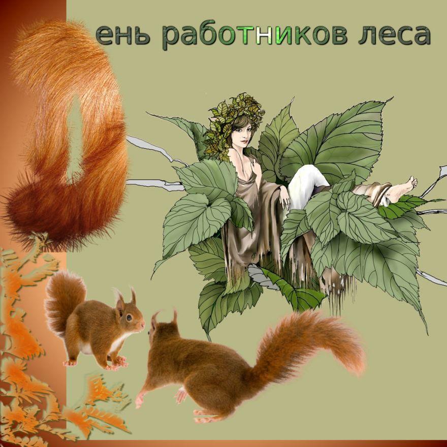 Красивые открытки с днем работников леса, бесплатно