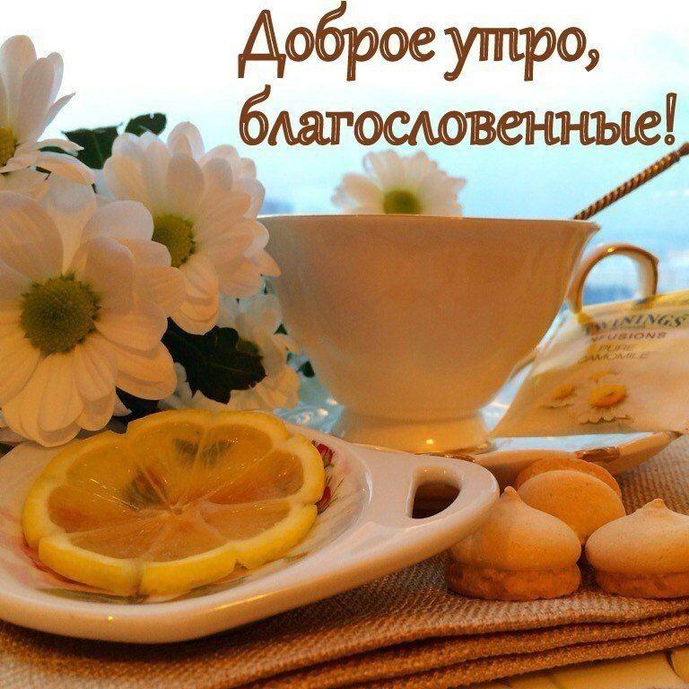 Прикольное, доброе утро скачать бесплатно