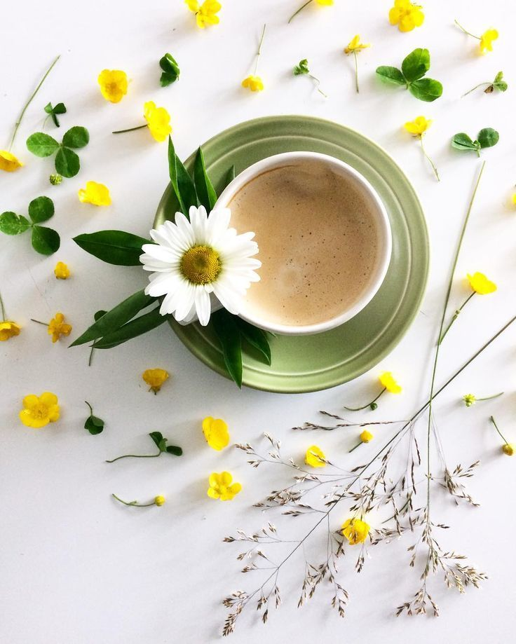 Доброе утро красивая картинка скачать бесплатно