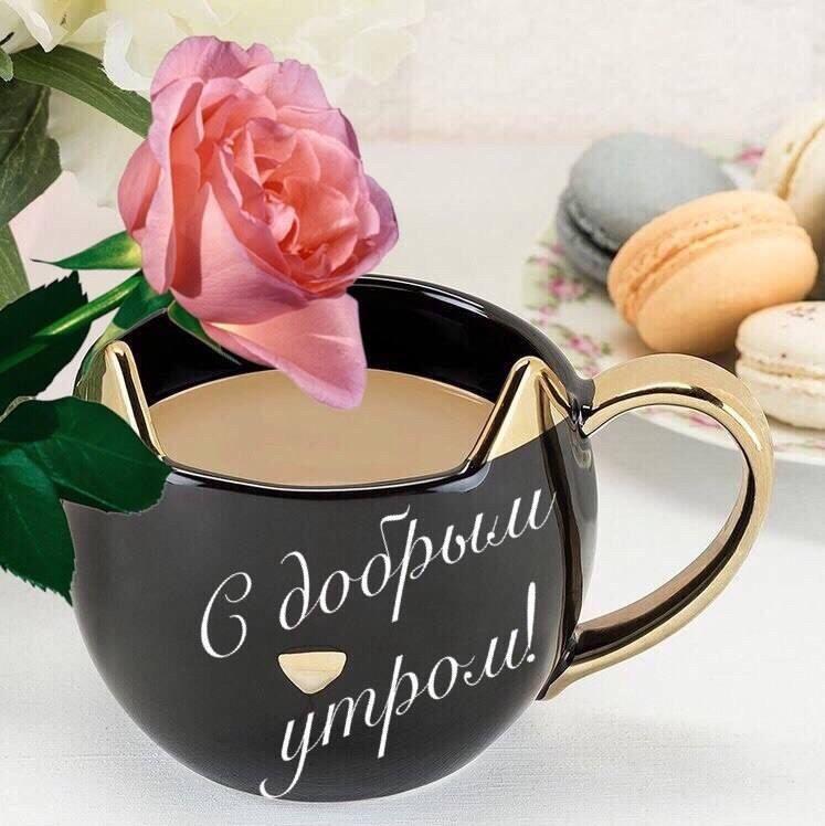Доброго утра и хорошего настроения женщине