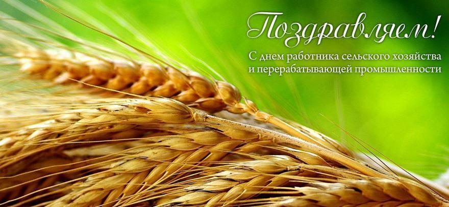 Поздравление с днем работника сельского хозяйства и перерабатывающей промышленности