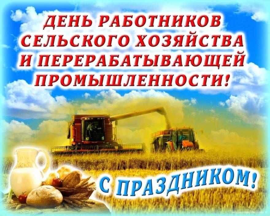 День работника сельского хозяйства и перерабатывающей промышленности в 2020 году какого числа?
