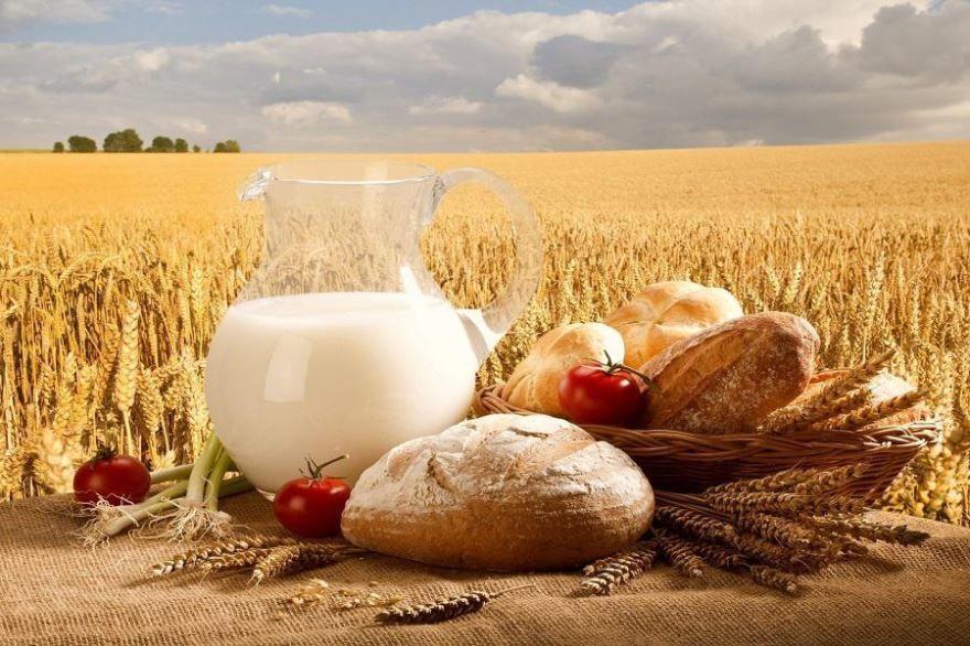 День работника сельского хозяйства и перерабатывающей промышленности в России какого числа?