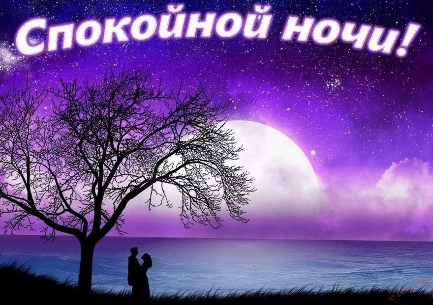 Доброй ночи, спокойной ночи - картинка красивая