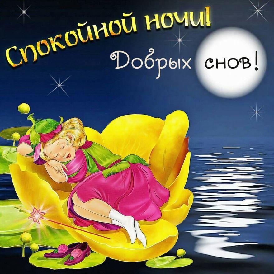 Спокойной ночи, добрых снов, картинка с пожеланием