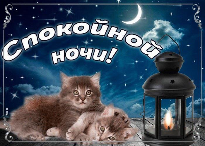 Скачать красивую открытку доброй ночи, сладких снов
