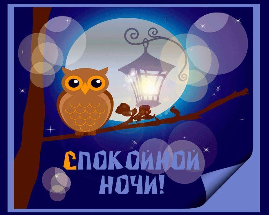 Доброй и спокойной ночи, прикольная картинка