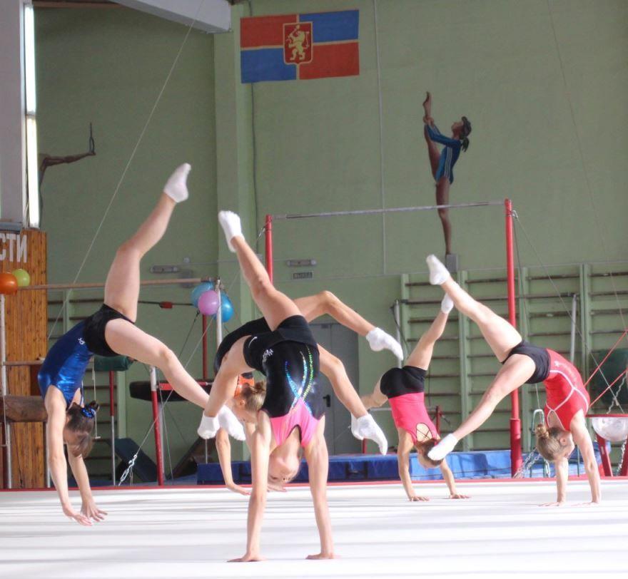 Красивое фото - день гимнастики