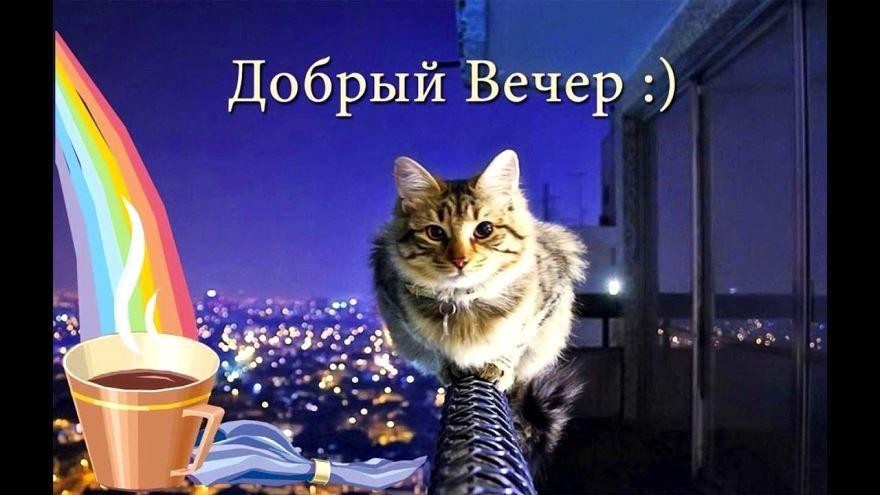 Красивая картинка - Добрый вечер, бесплатно