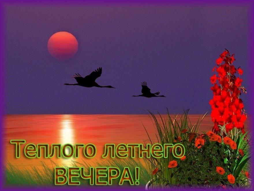 Доброго, летнего вечера, красивая картинка