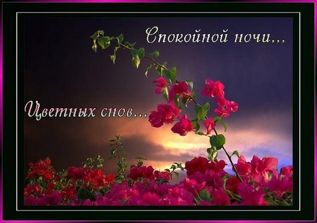 Спокойной ночи и весенних снов, картинка красивая