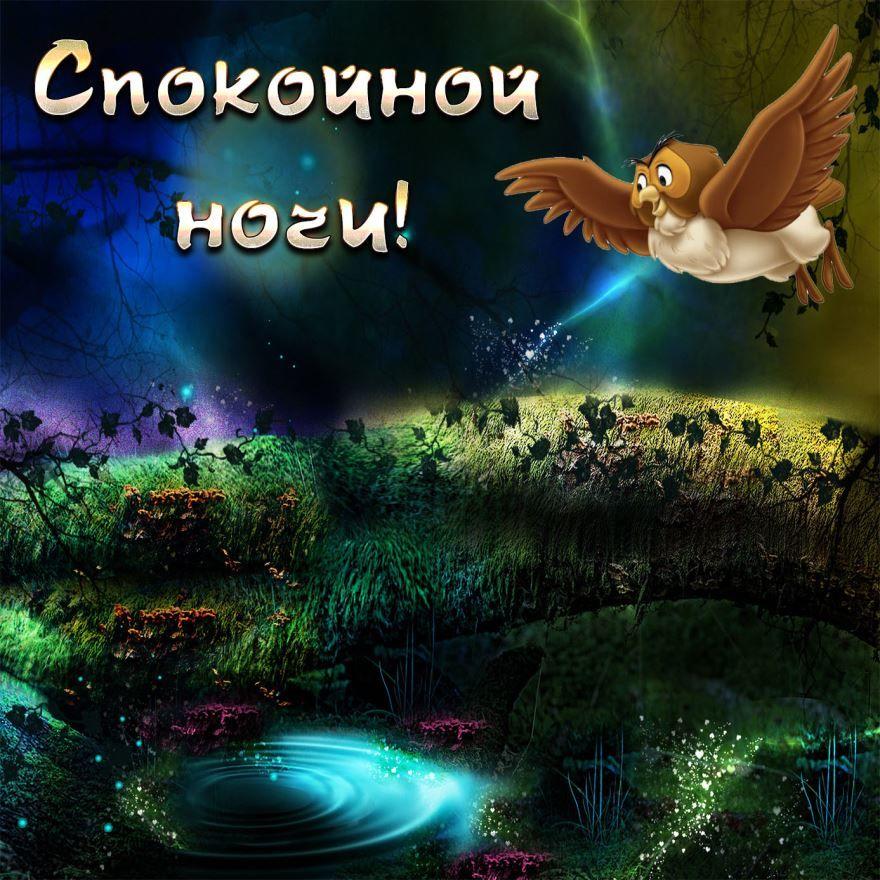 Доброй, весенней ночи и отличного настроения