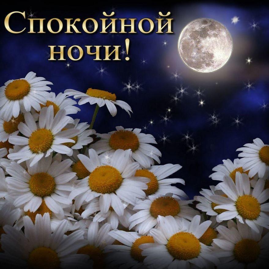 Доброй, весенней ночи, картинка бесплатно