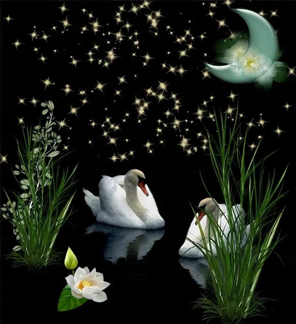 Красивая картинка - Доброй, весенней ночи любимой