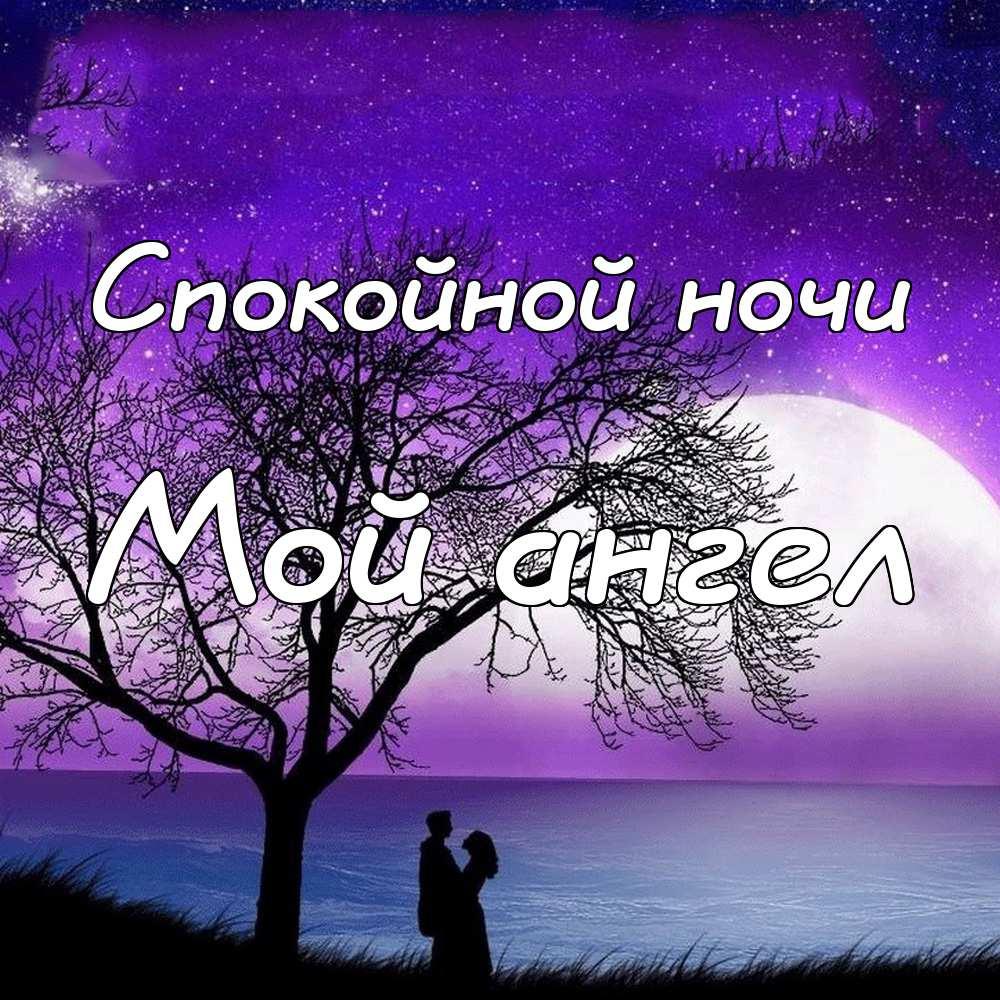 Доброй ночи девушке красивая картинка