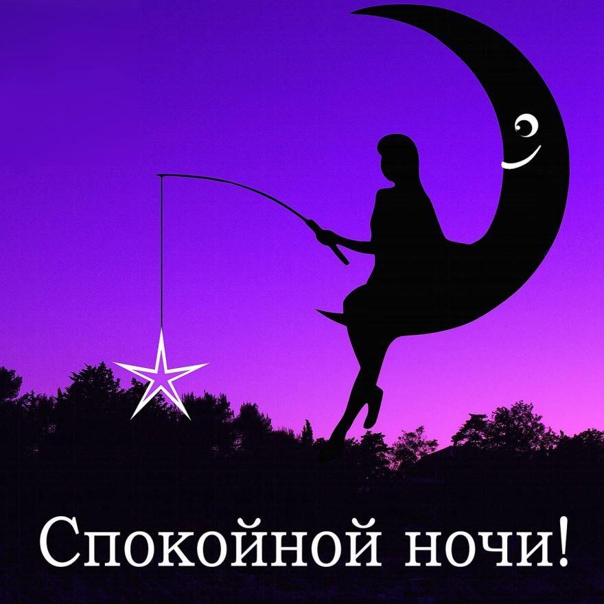 Пожелание доброй ночи женщине, картинка