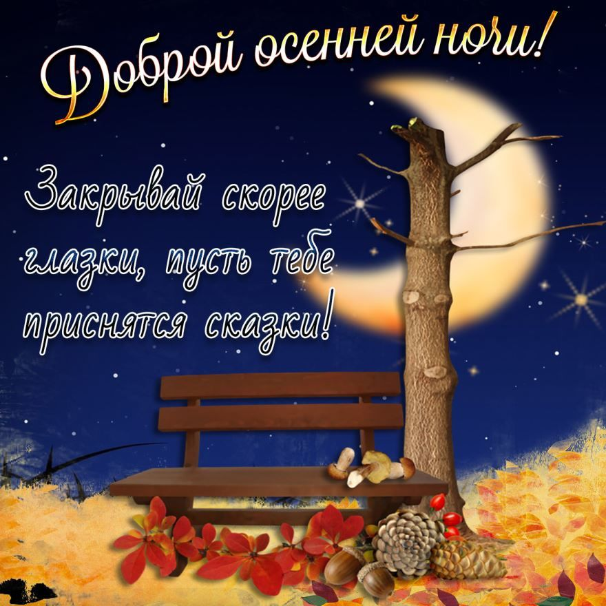 Доброй, осенней ночи красивая картинка с пожеланием