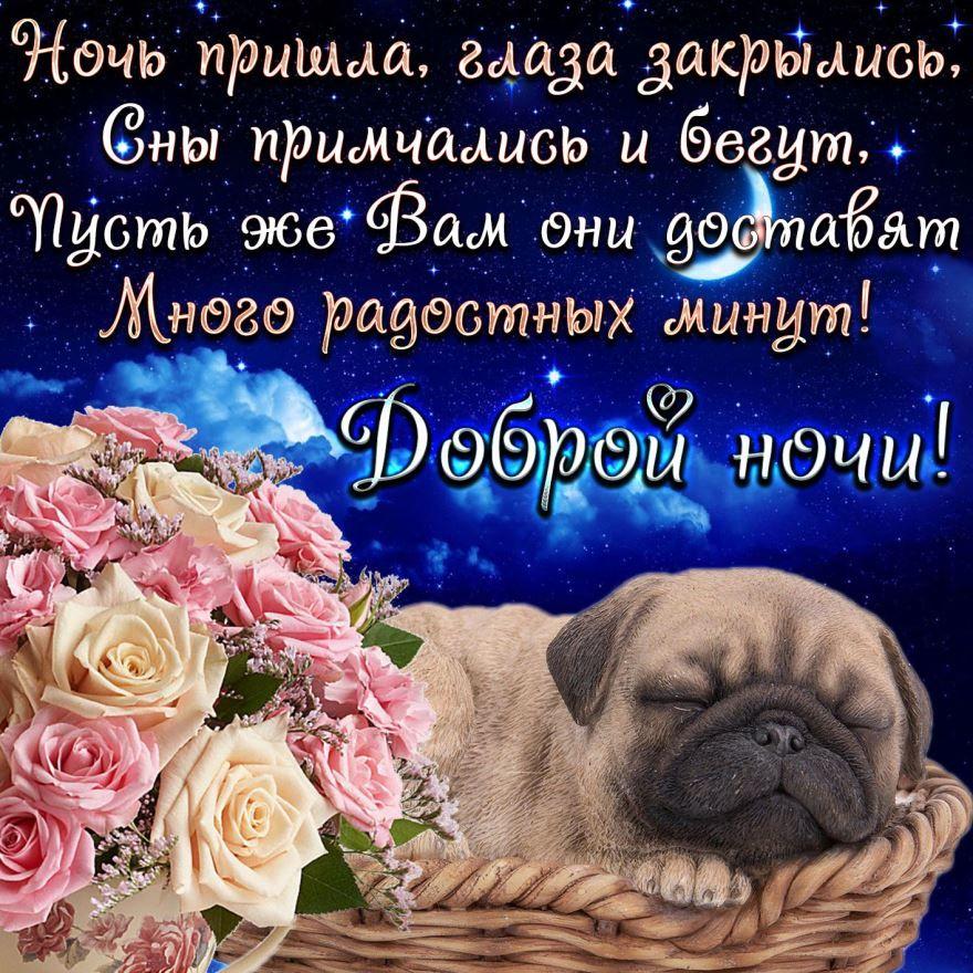 Прикольная картинка с красивым пожеланием 'Доброй ночи'