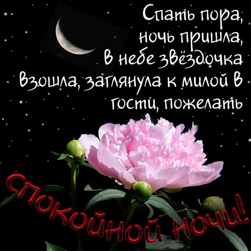 Доброй и спокойной носи красивые цветы с красивым пожеланием