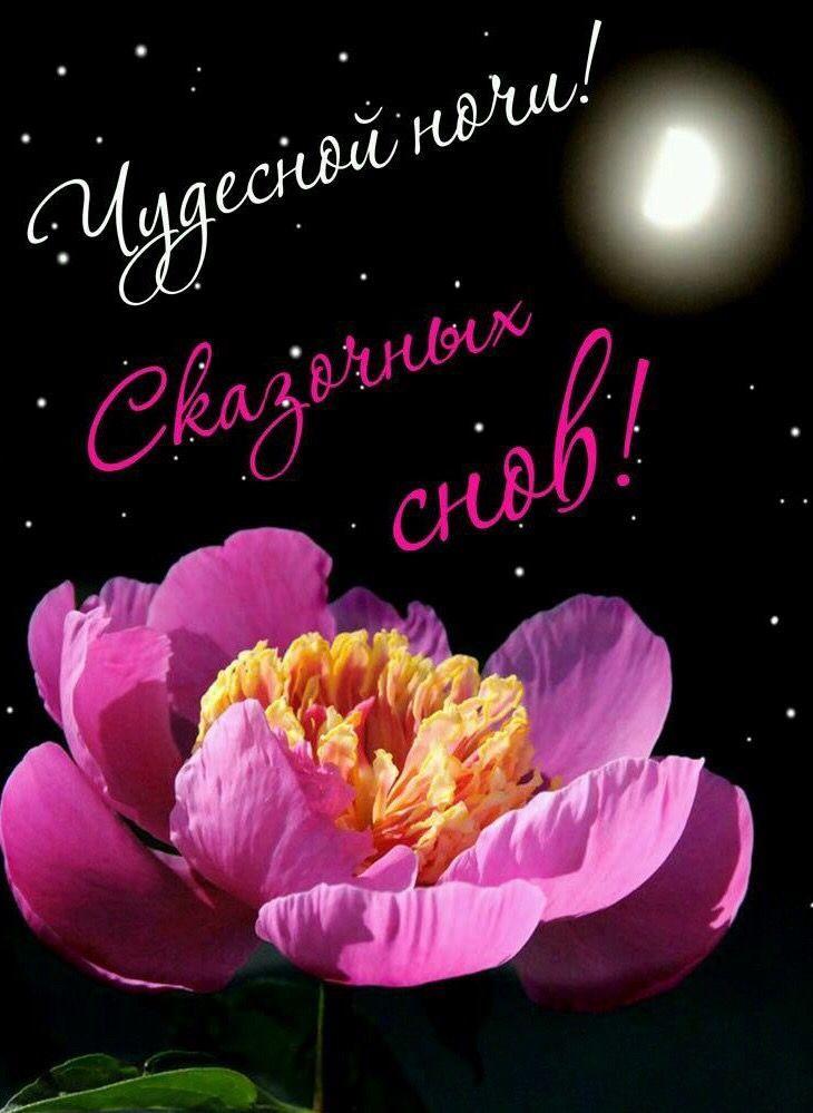 Доброй ночи цветы, картинки бесплатно