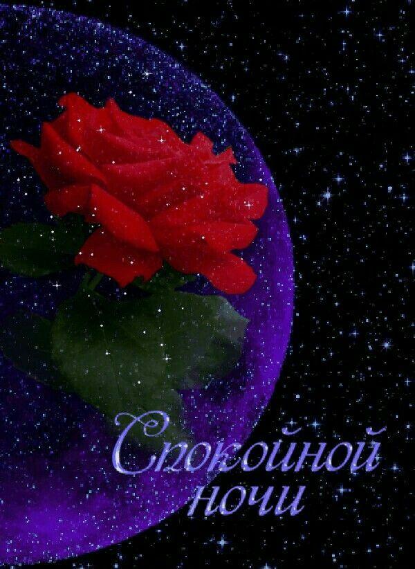Доброй, спокойной ночи картинки красивые с цветами