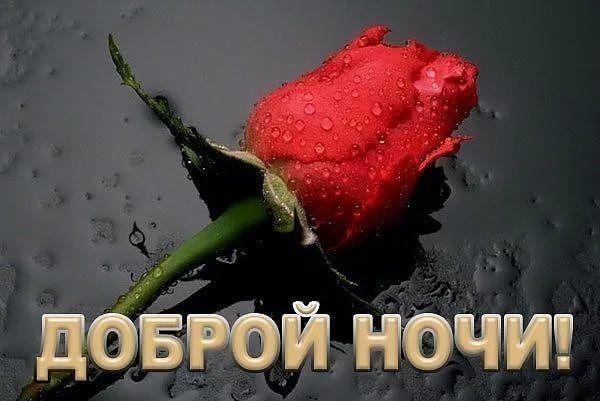 Доброй ночи картинка 'Цветы' с надписью