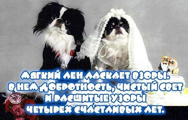 4 года Свадьбы картинки прикольные