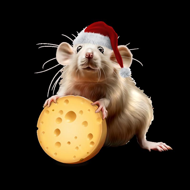 Картинка мышь на Новый год 2020