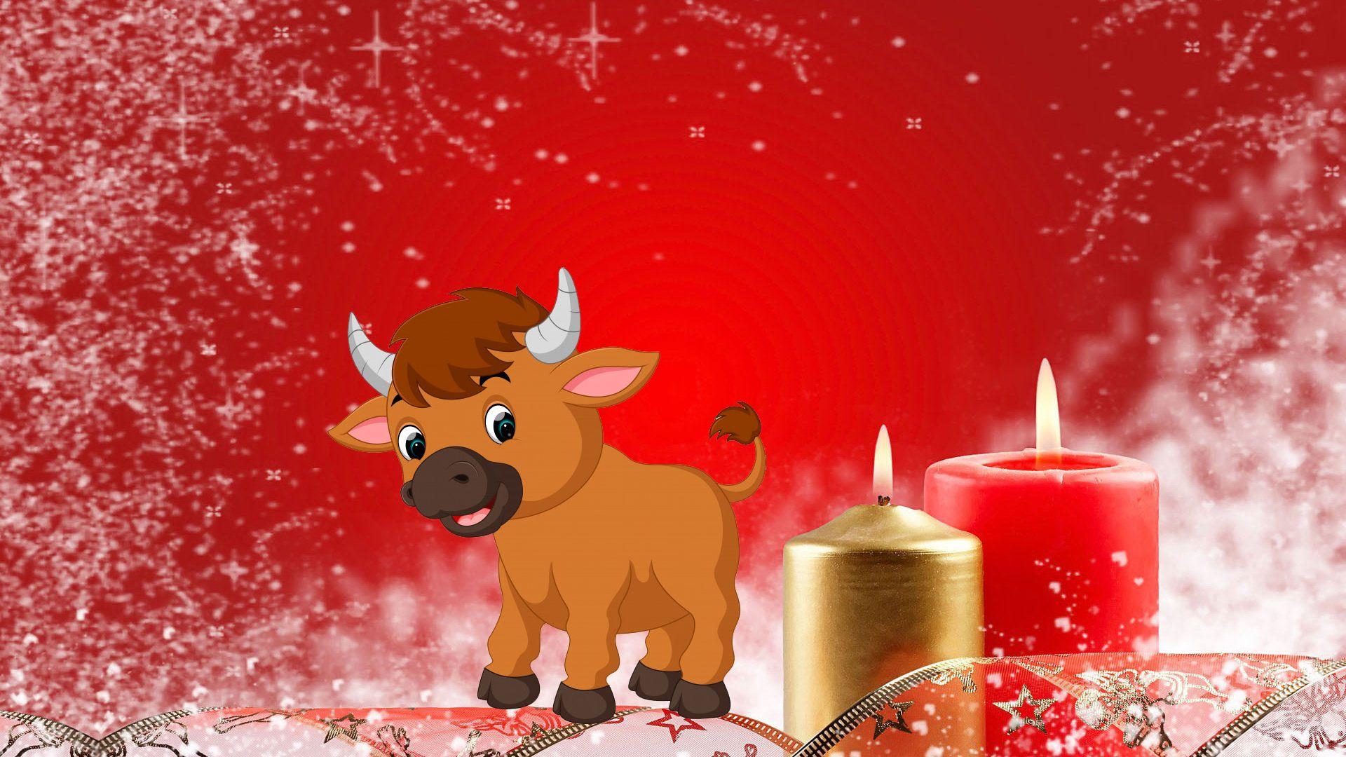 Символ Нового года бык