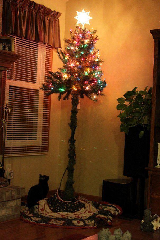 Прикольные, смешные картинки, фото с кошками и елками на Новый год