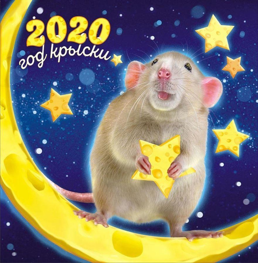С Наступающим Новым годом 2032, картинка
