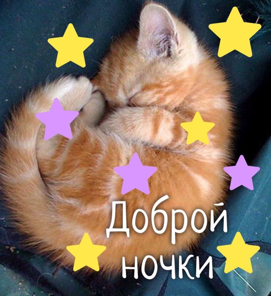 СМС Доброй ночи, красивая открытка