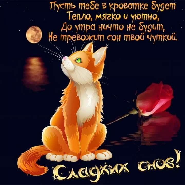 Пожелание Доброго вечера и спокойной ночи, открытка бесплатно