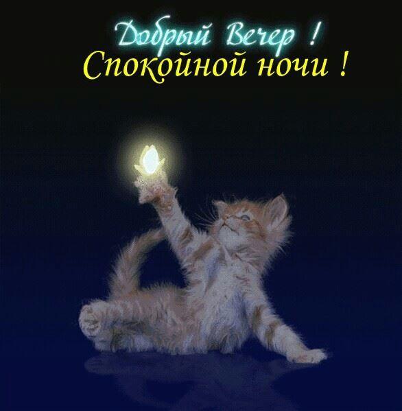 Доброго вечера и спокойной ночи, картинка