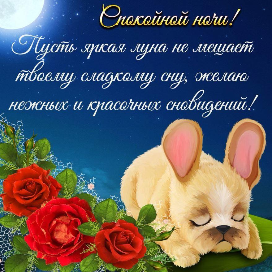 Красивая открытка с пожеланием Спокойной ночи, своими словами