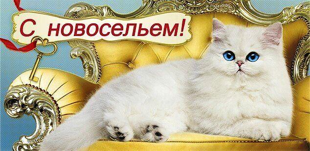 С Новосельем красивая картинка