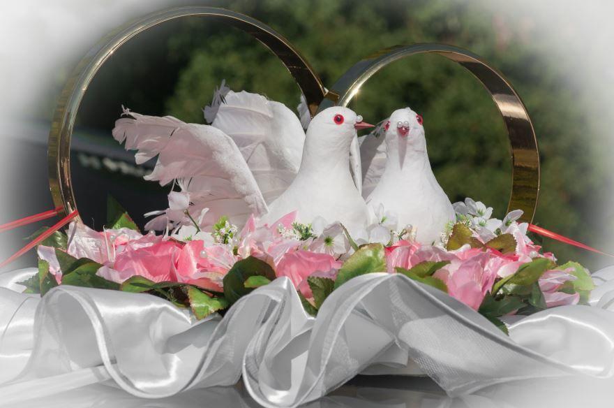 Картинки со Свадьбы