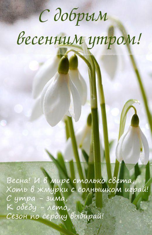 Пожелания С Добрым весенним утром