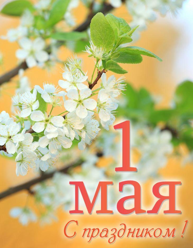Картинка поздравление с праздником 1 мая