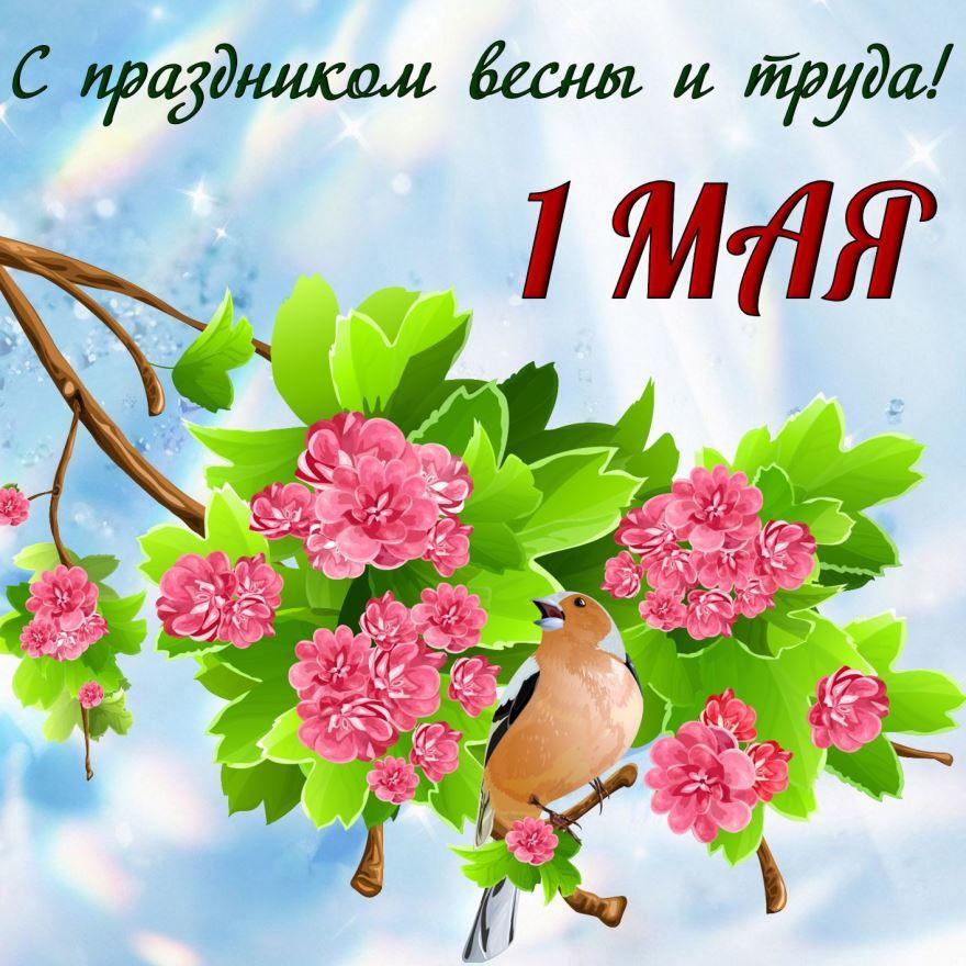 1 мая праздник Весны и Труда скачать открытку