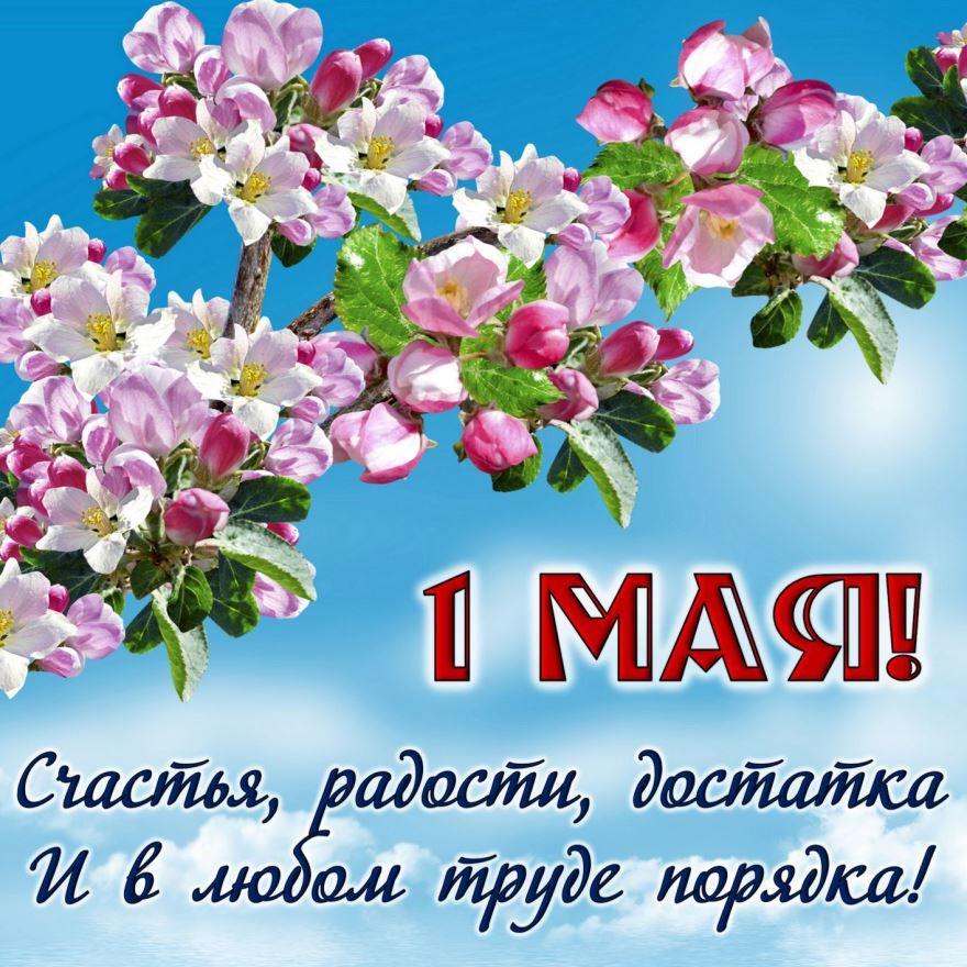 Поздравления с 1 мая красивые открытки
