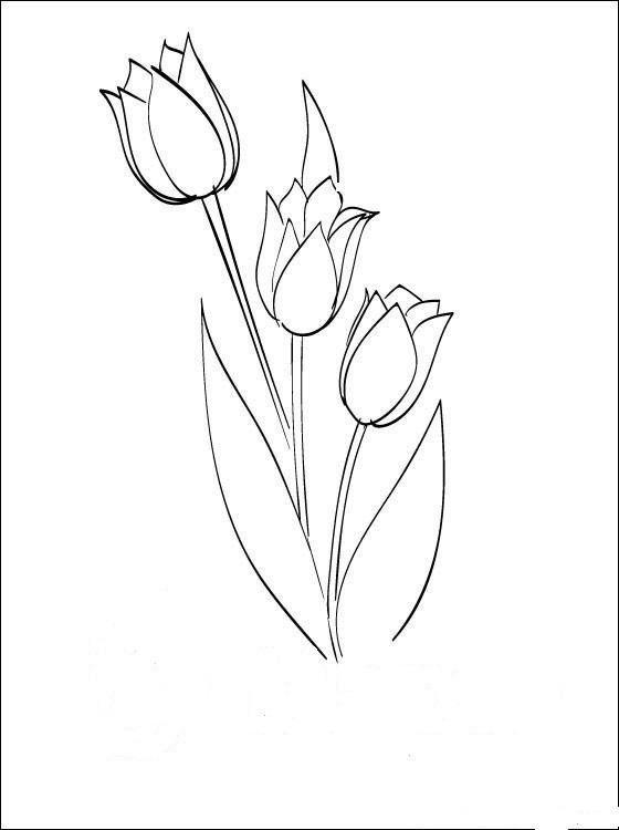 8 Марта простые рисунки, цветы