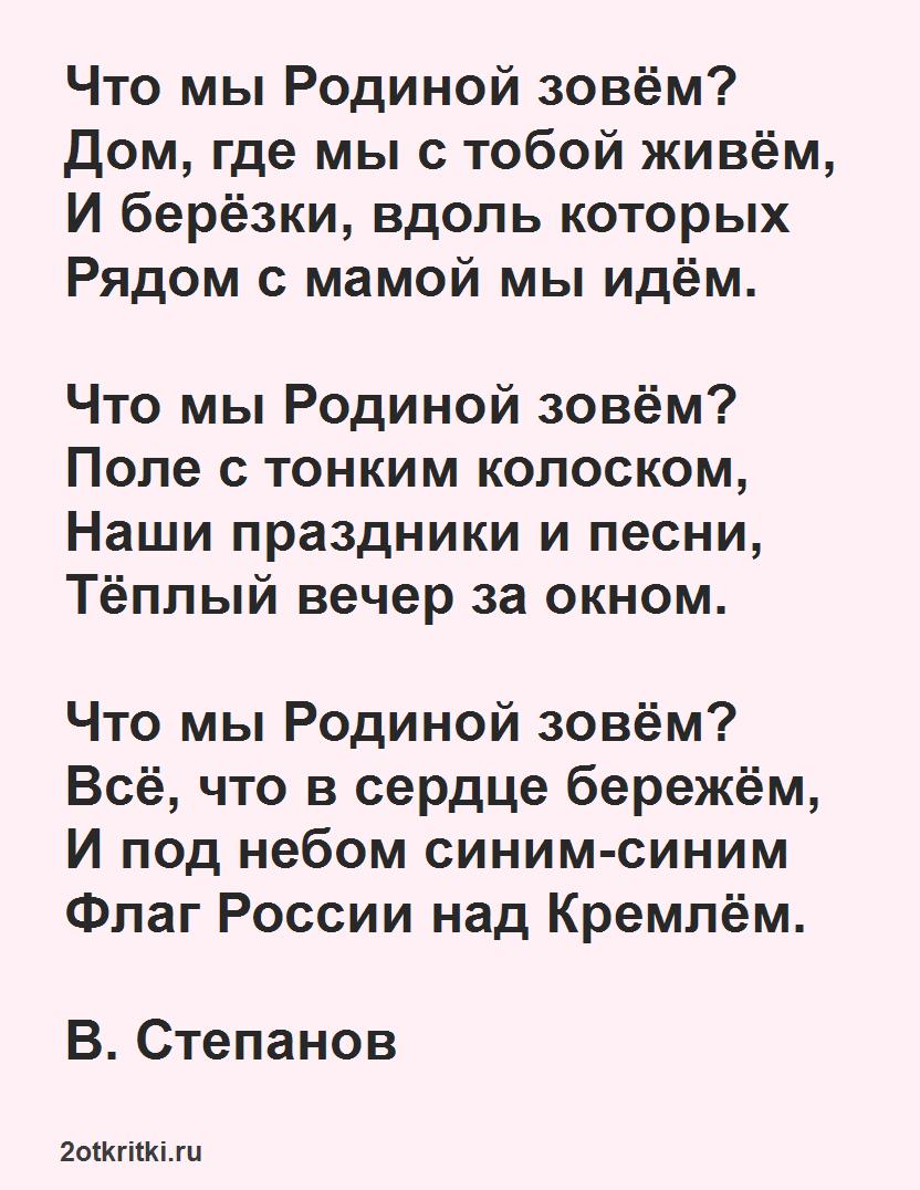 Стихи ко дню России - Что мы Родиной зовем