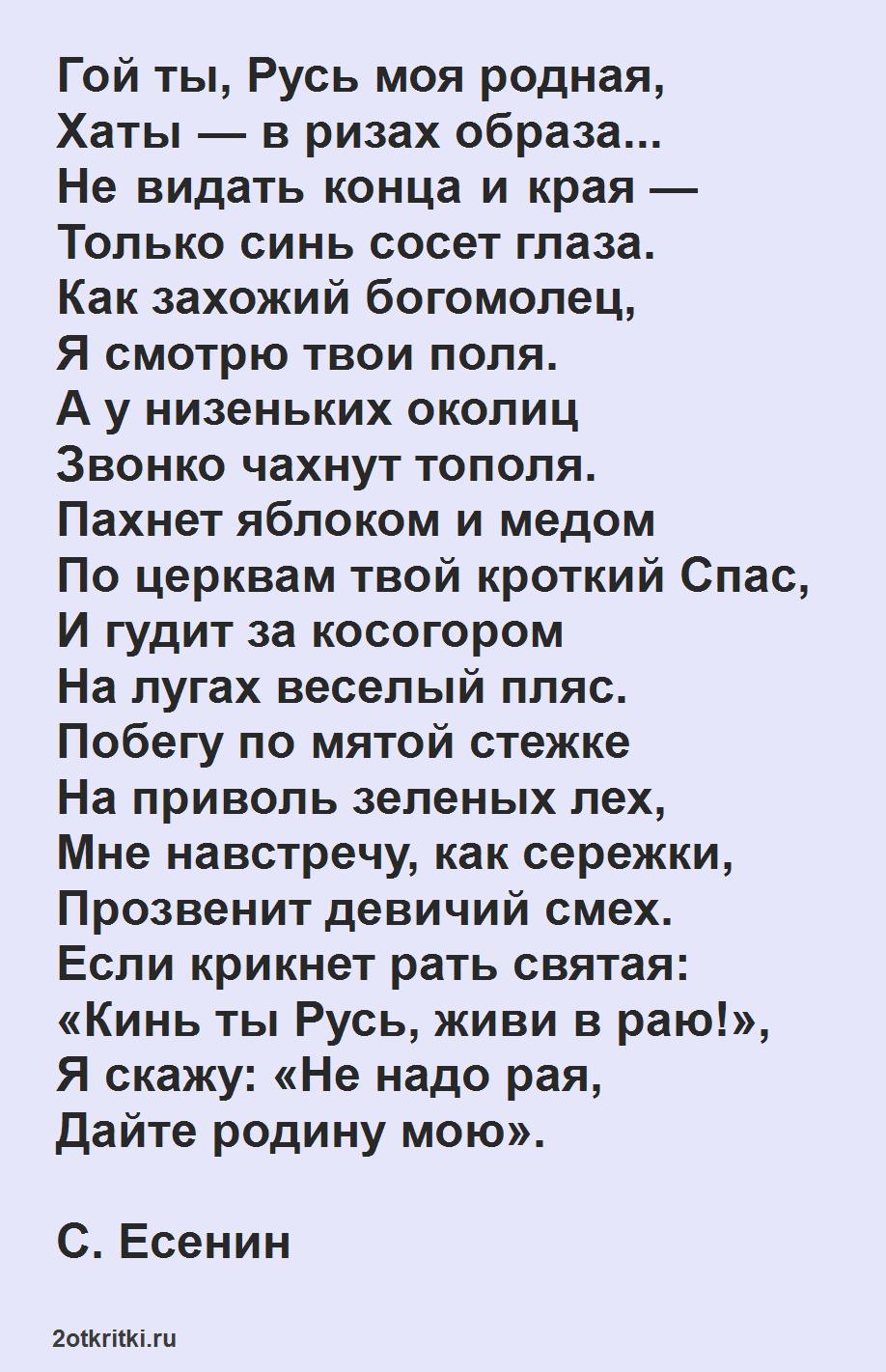 Стихи ко дню России - Гой ты, русь моя родная