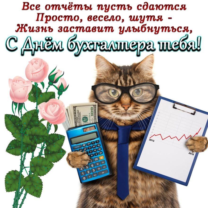 С Днем бухгалтера красивая картинка